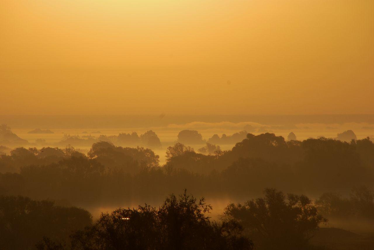солнце пейзаж Природа утро рассвет туман