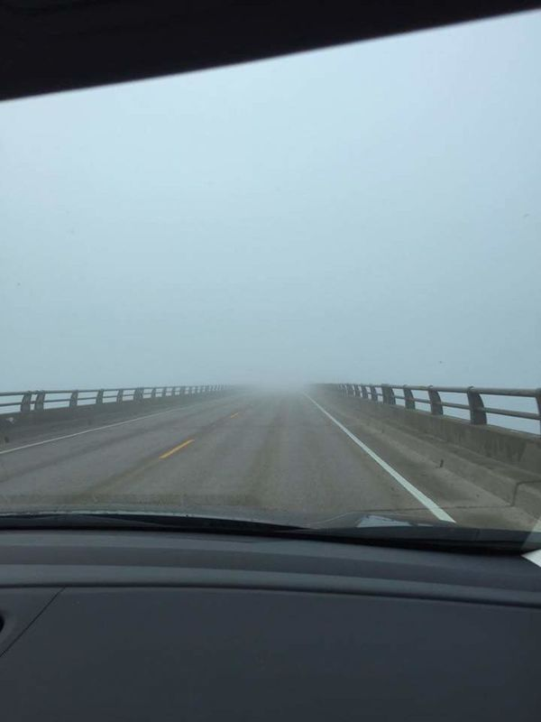 Into the fog Into The Fog Driving Bridge Fall Morning Outdoor Photography