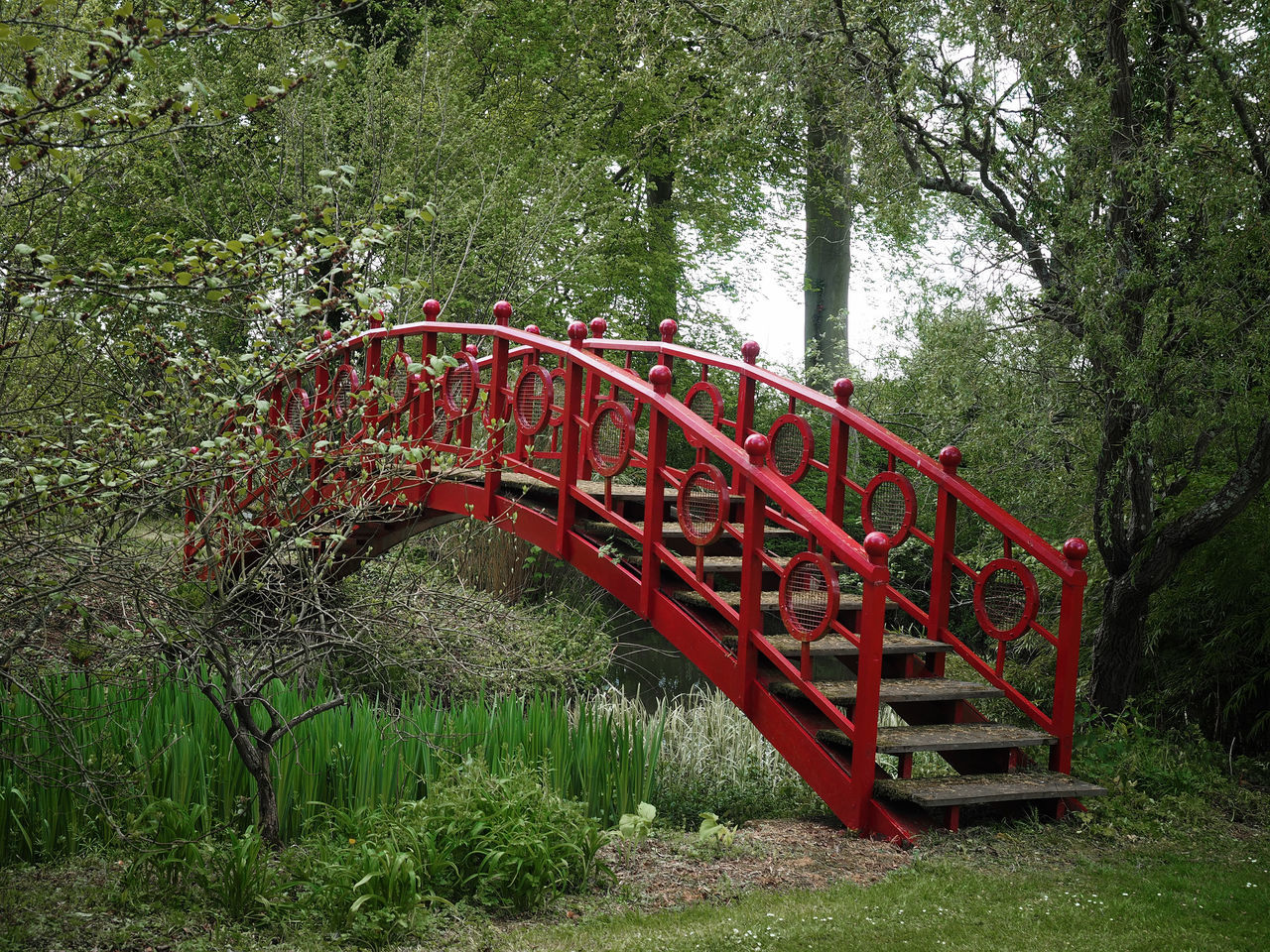 Red Japanese Bridge - Thenford House. Japanese Bridge Beauty In Nature Bridge Bridgeproject Landscape Nature Olympus Images Outdoors Park - Man Made Space Red Thenford House Tree