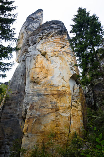Adršpach Adršpachské Skály Nature Outdoors Park Rock - Object Stone Unique