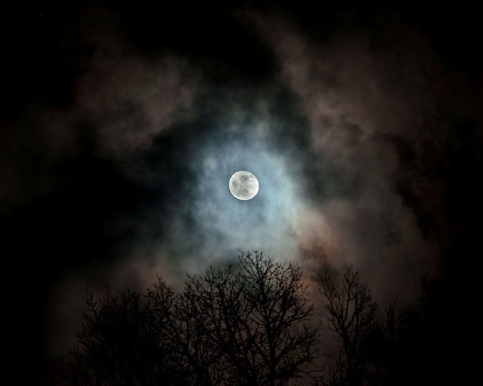 Beautiful stock photos of full moon, Beauty In Nature, Cloud - Sky, Full Moon, Growth