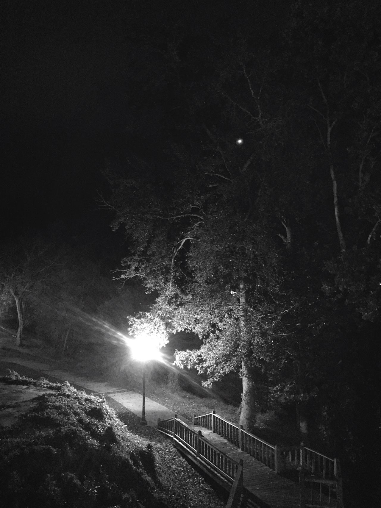 Along the Coosa River. Rendered by my iPhone. Nightphotography Streetlights
