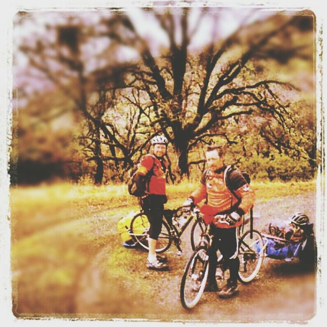 TreePorn Mountain Biking Nature_collection