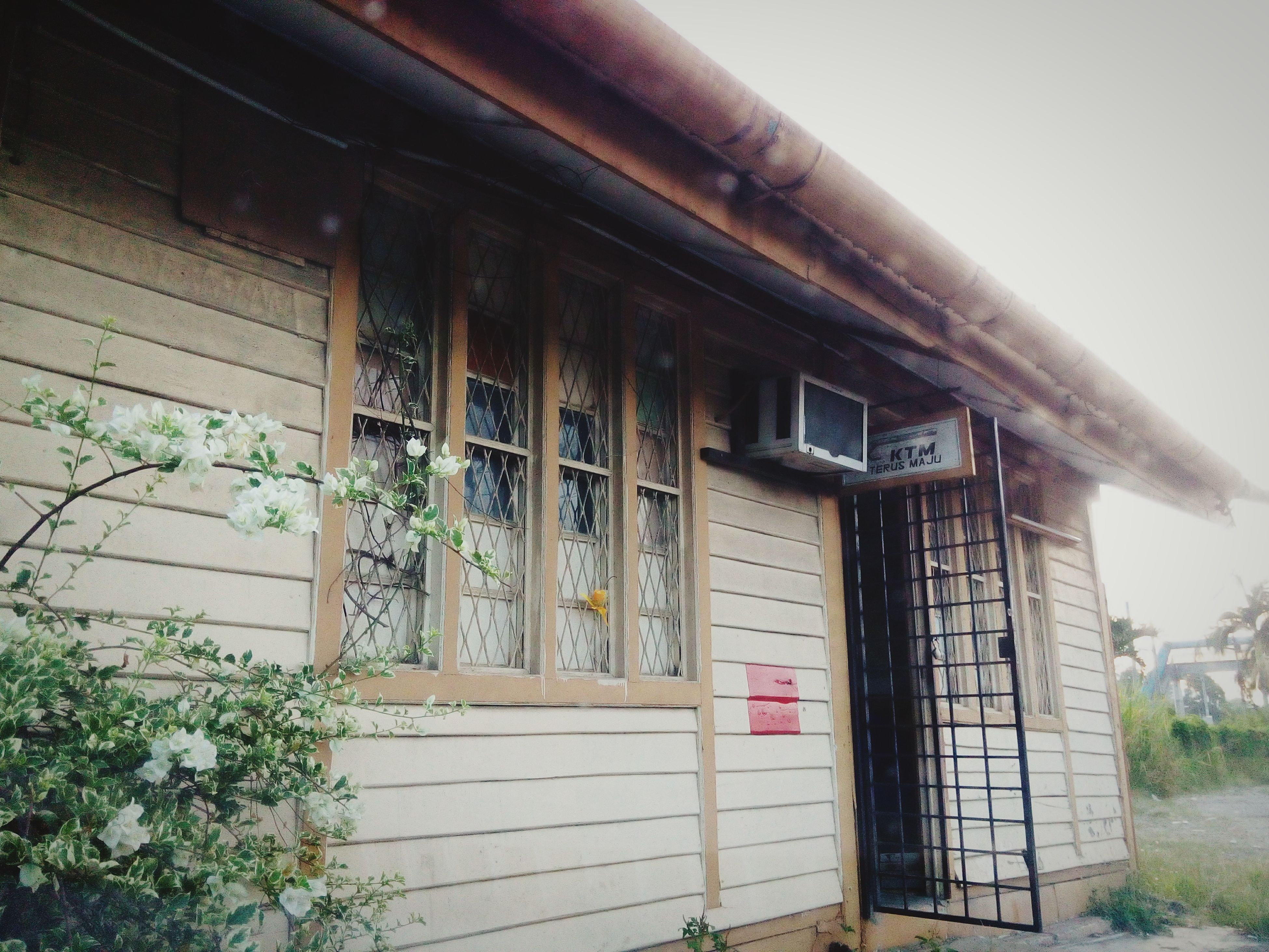 architecture, built structure, building exterior, house, window, door, closed, entrance, residential structure, wood - material, plant, day, building, outdoors, no people, old, facade, residential building, tree, abandoned