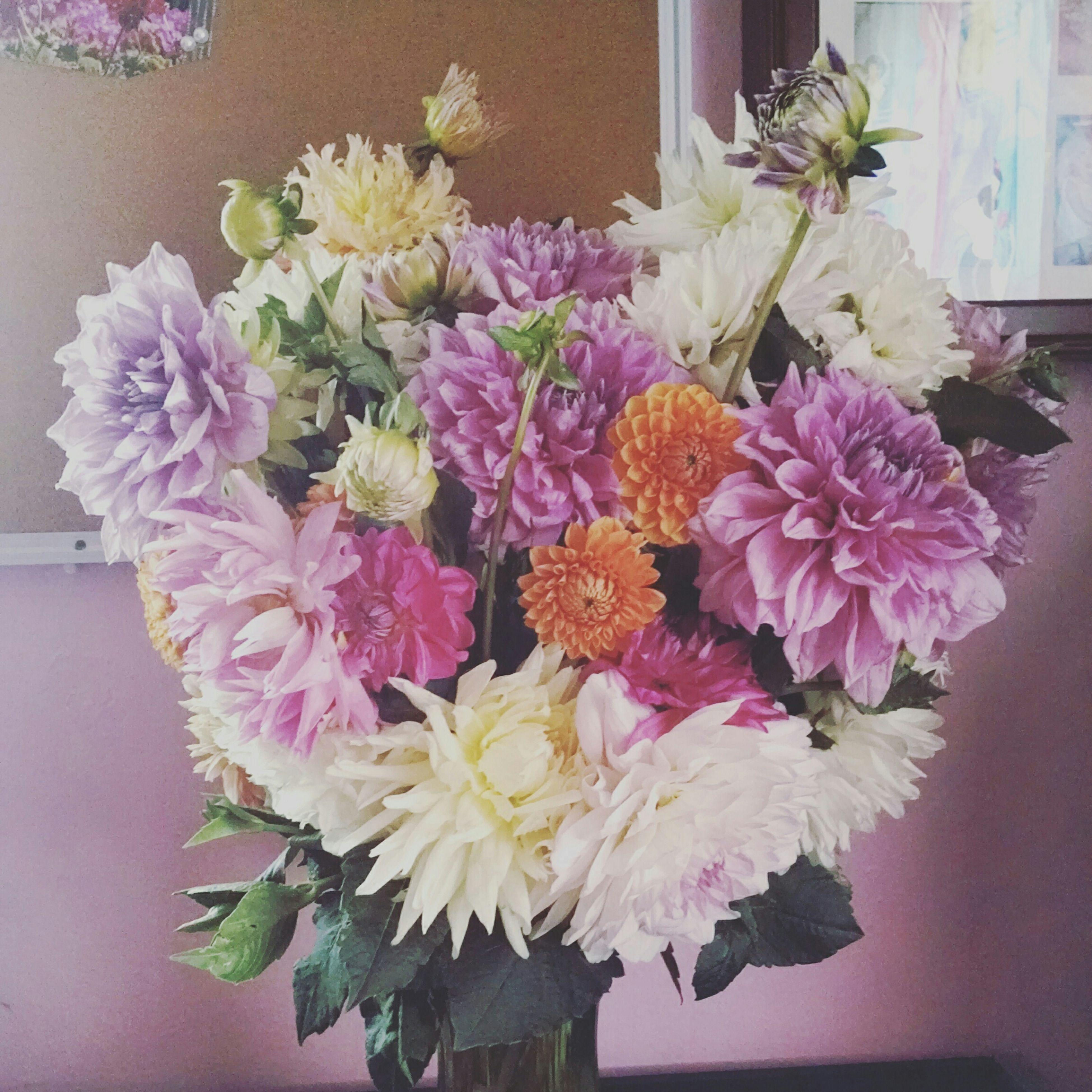 flower, freshness, indoors, fragility, petal, vase, flower head, bunch of flowers, potted plant, growth, flower arrangement, beauty in nature, plant, bouquet, nature, home interior, decoration, leaf, close-up, flower pot