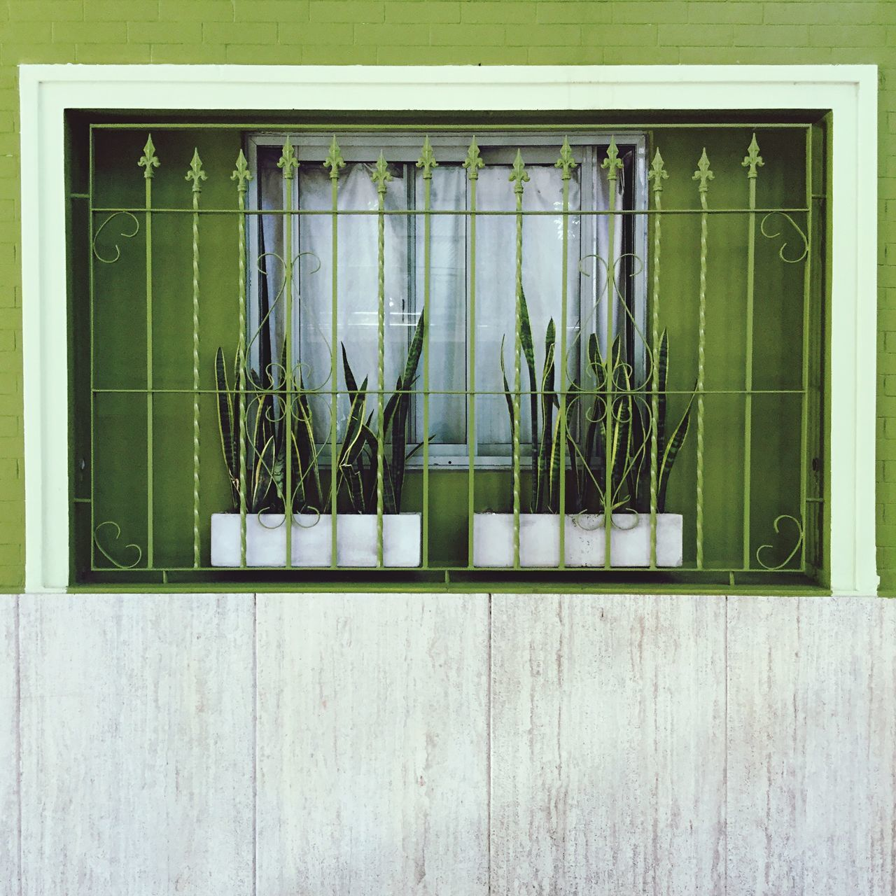 Green Color Building Exterior Built Structure Plant Window Architecture No People Day Grass Outdoors Nature Window Collection Green Wall Getting In Shape Getting Inspired Getting Creative Architecture_collection Architecture Details