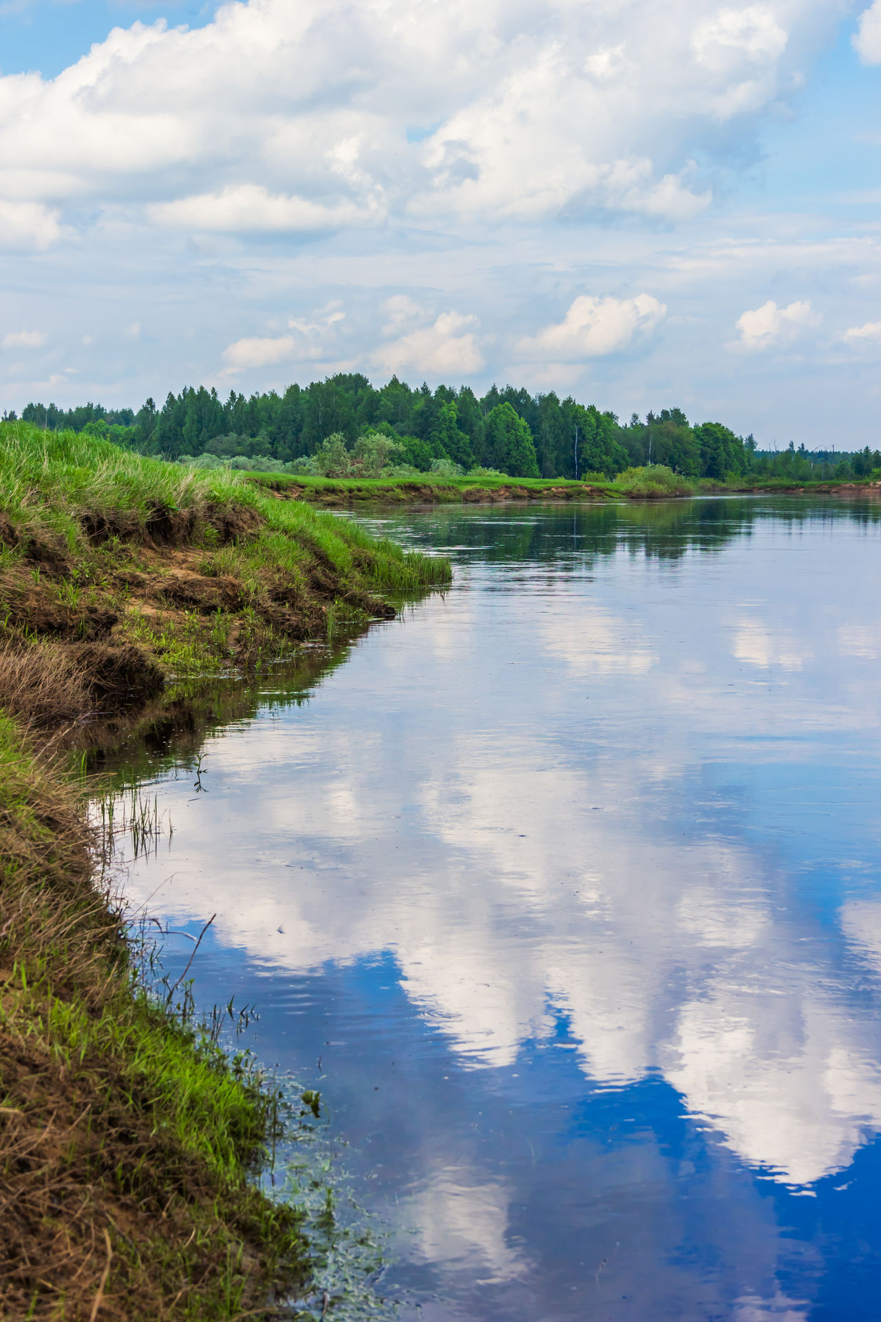 Clouds reflected in the river Mologa Cloud - Sky Day Lake Landscape Mologa Nature No People Outdoors Reflection River Scenics Sky Swamp Water