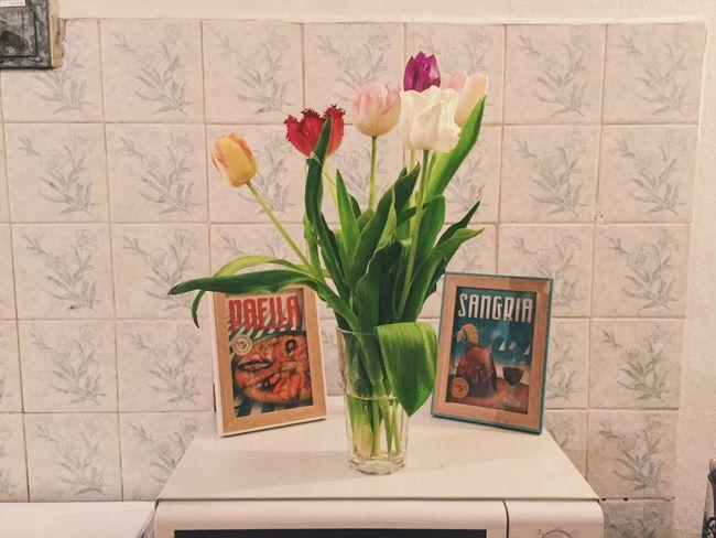 Flowers Flower Collection Kitchen Spanish Spanish Style Tulips Tulips🌷