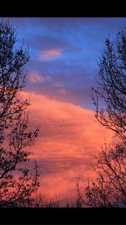 Great Views EyeEm Nature Lover The Five Senses Beautiful Colors Nature_collection Utah Nature EyeEmBestPics Eye4photography