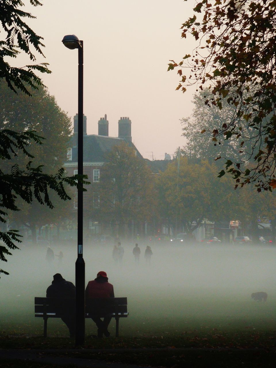 People Sitting On Bench At Park In City During Foggy Weather