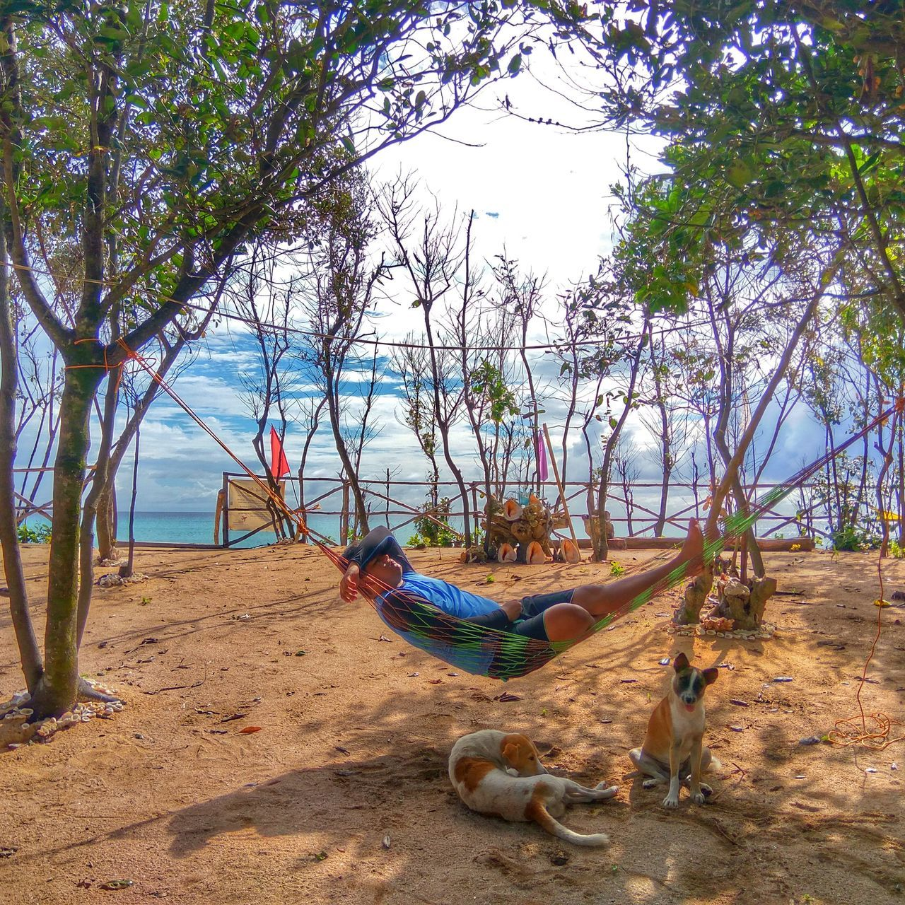 We travel not to escape life, but for life not to escape us.. Jomalig Jomalig Island Sand Beach Tree Nature Outdoors Hammock TravelPhilippines Travelph Byahenitinoki Travelgram Sea Byahenitinoki Dog Shore Sky Day Solotraveler Solo EyeEmNewHere