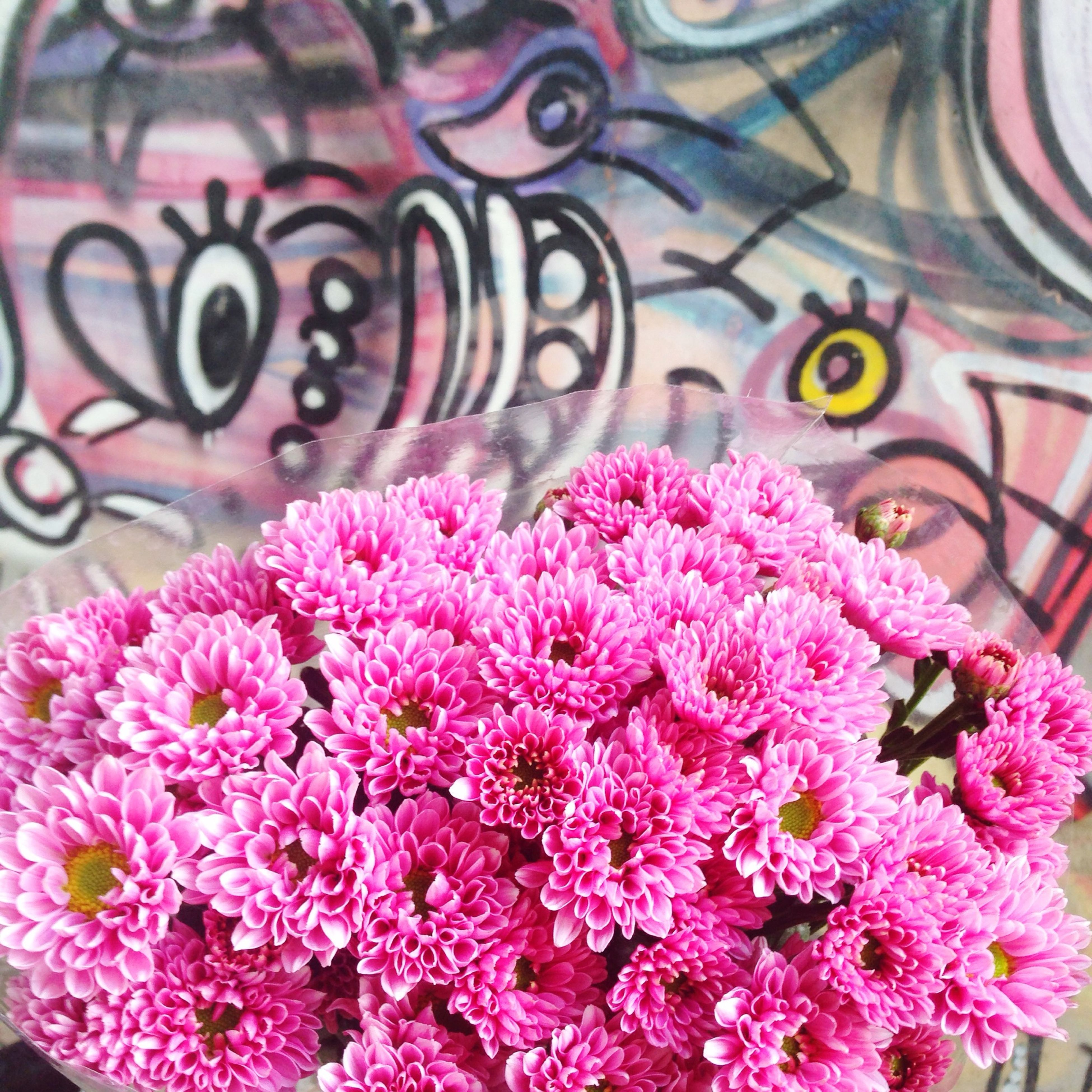 flower, freshness, pink color, petal, fragility, flower head, beauty in nature, close-up, nature, blooming, multi colored, growth, plant, pink, high angle view, indoors, focus on foreground, no people, in bloom, bouquet