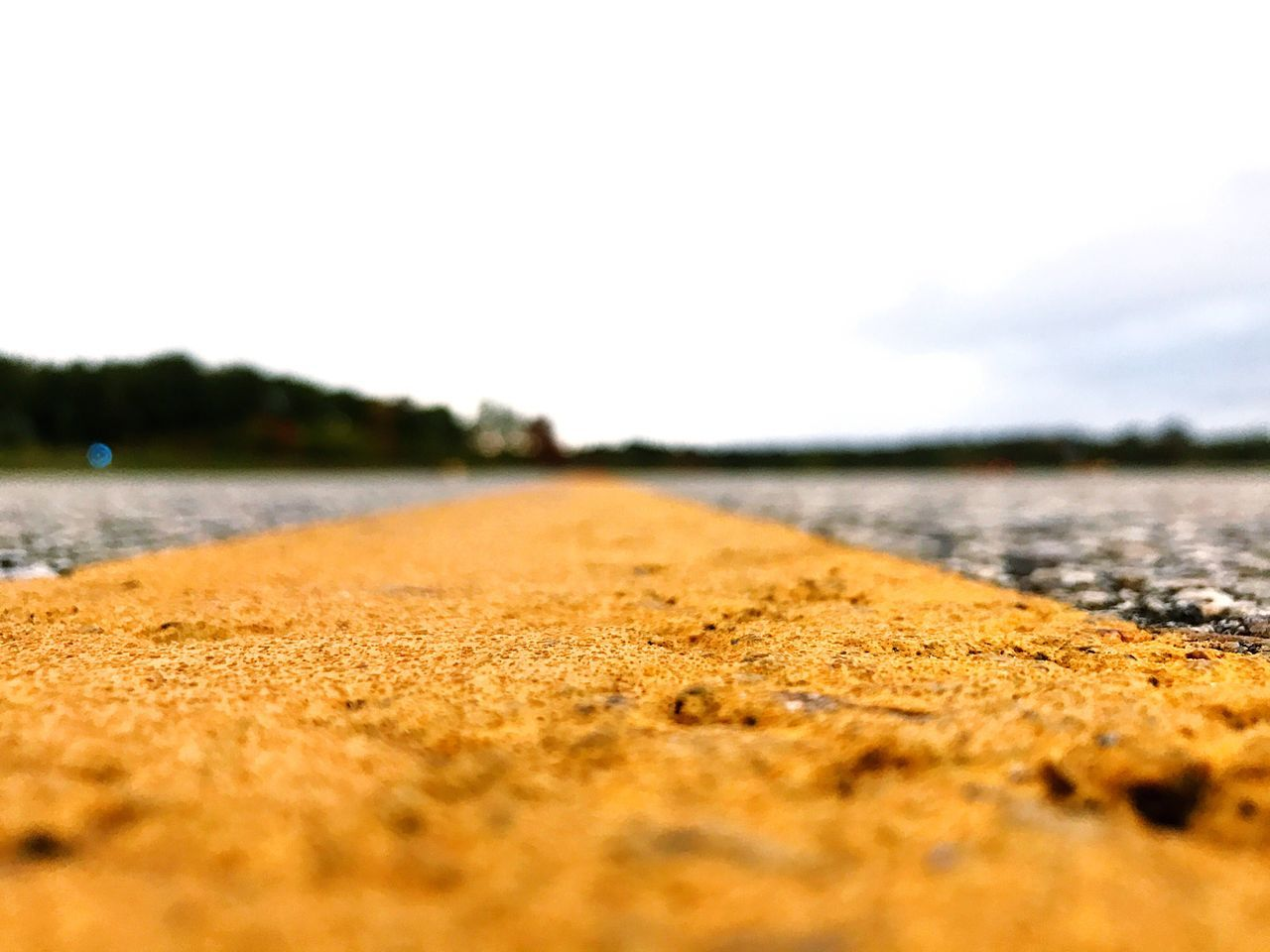 TakeoverContrast Surface Level Vacations Travel Destinations Tourism Tranquil Scene Tranquility Scenics Runway Selective Focus No People Still Life Lush Foliage Tree Pavement Maximum Closeness