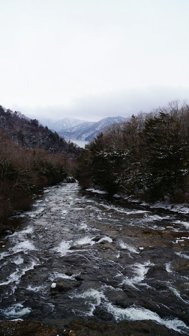 🏔🌲💦 Japan Nikko Nature Nature Photography Natural Beauty Trees And Sky Trees River Winter Mountain View Week On Eyeem Landscape Naturelovers