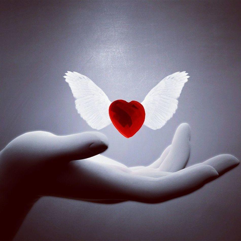SetFree HappinessIsTheKey Selfless Letgo LoveCanBeReal IfItsTrue WillReturn DontChase