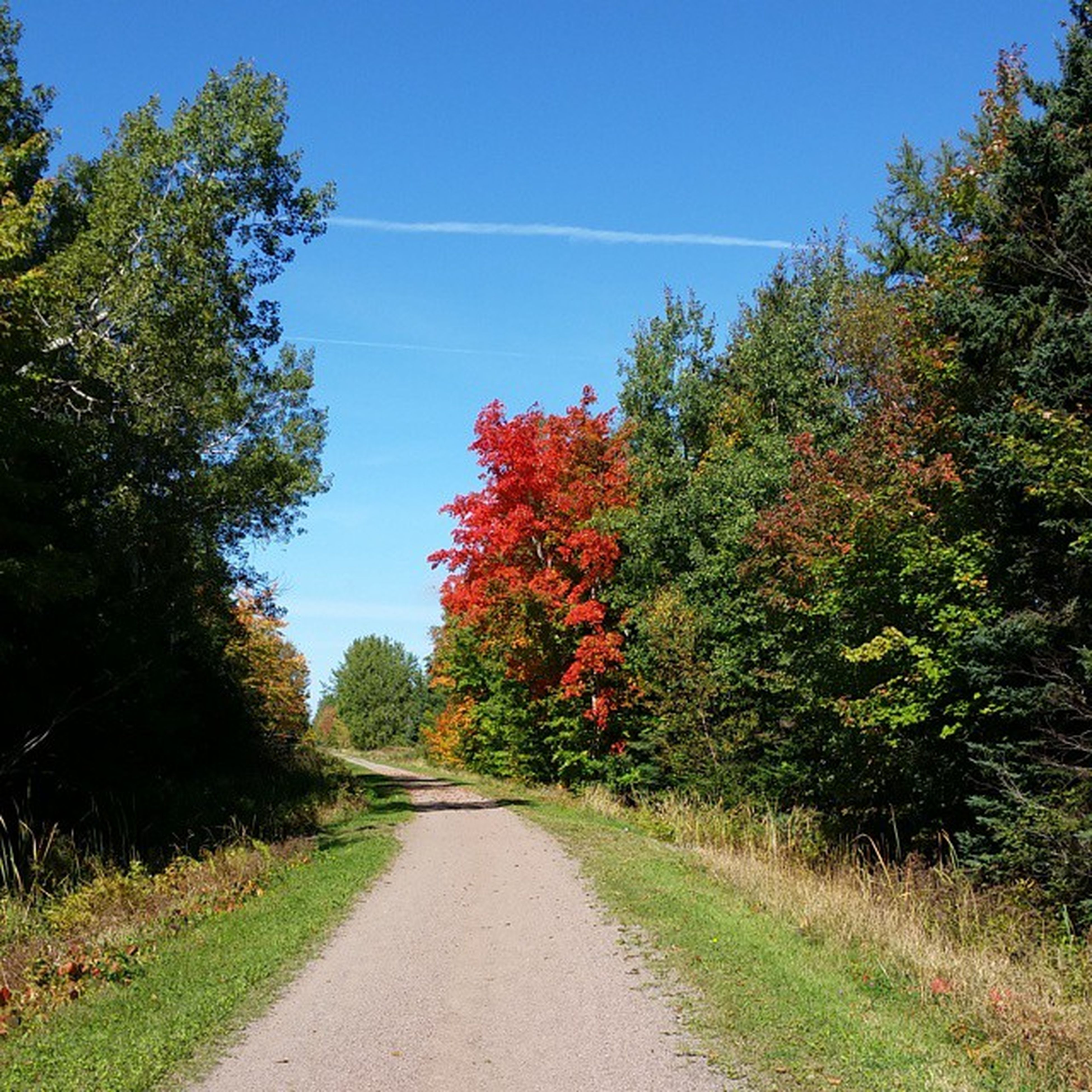 Fall Confederationtrail Stlouis