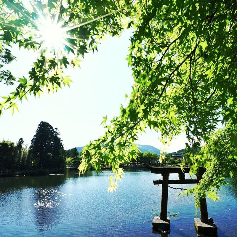 Peaceful Lake 鳥取 Japan
