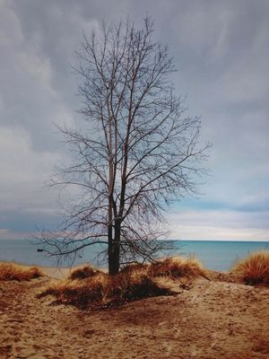 Taking Photos at Wilmette Beach by Jon Yager