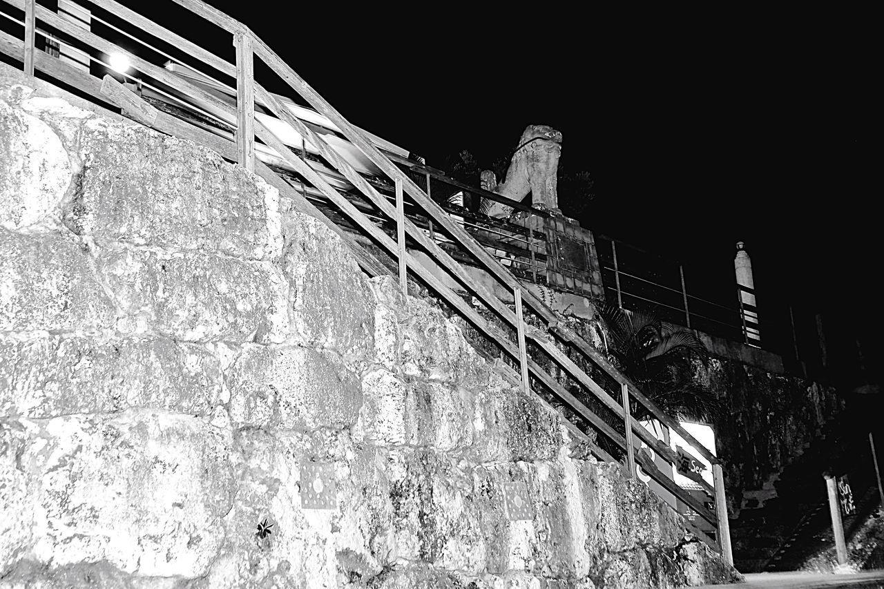 白黒 Monotone モノトーン シーサー 沖縄 Okinawa 南城市 Nanjyo-city 石垣 日本 Japan