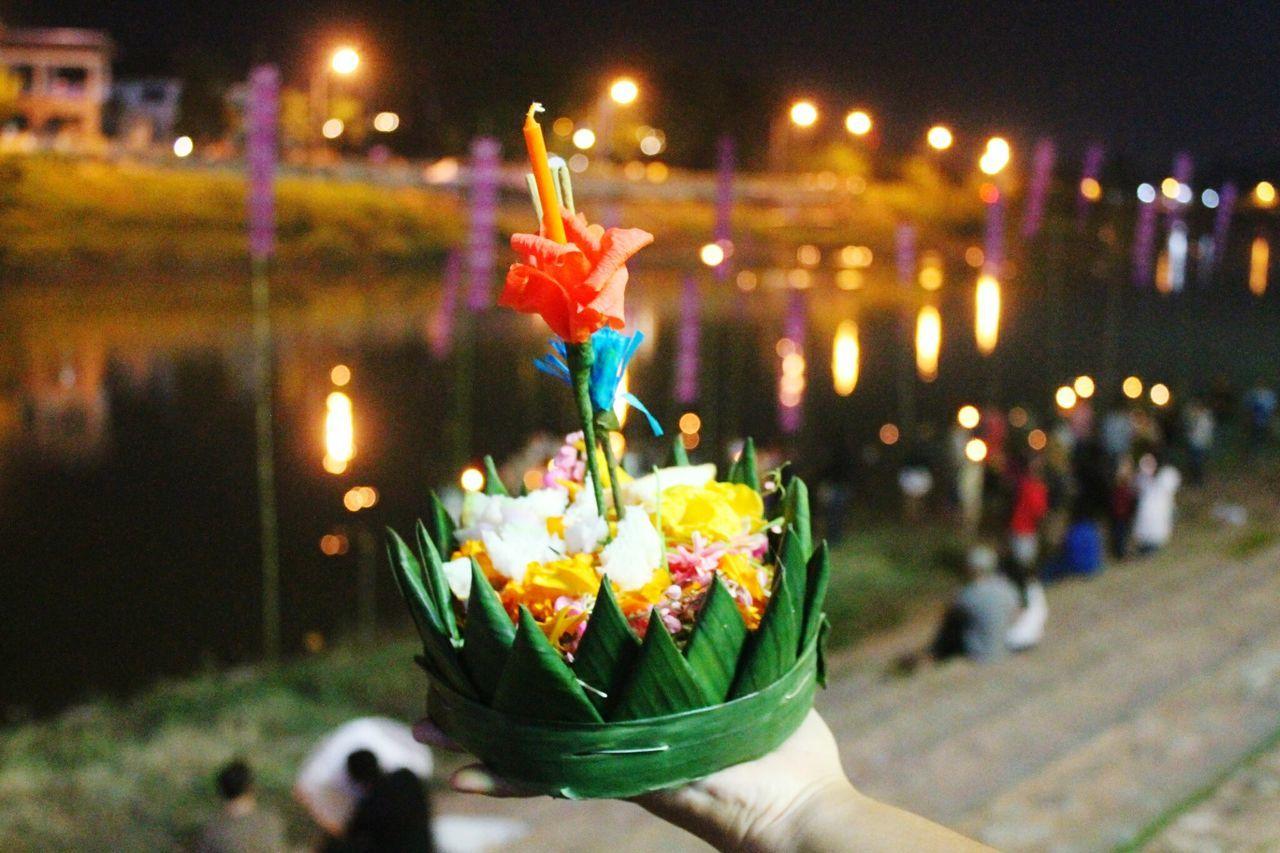 EyeEm Selects Loy Kra tong ลอยกระทง Candle Flower Flame Focus On Foreground Freshness Celebration Thailand NAN Thailand Beauty Lifestyle