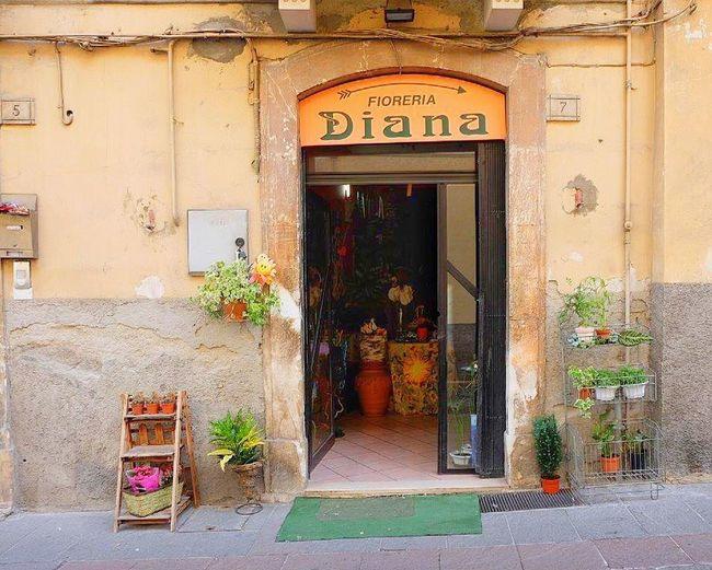 Sulmona, Italy Sulmona Italy Travel Photography Enjoying Life Ihaveathingforwalls