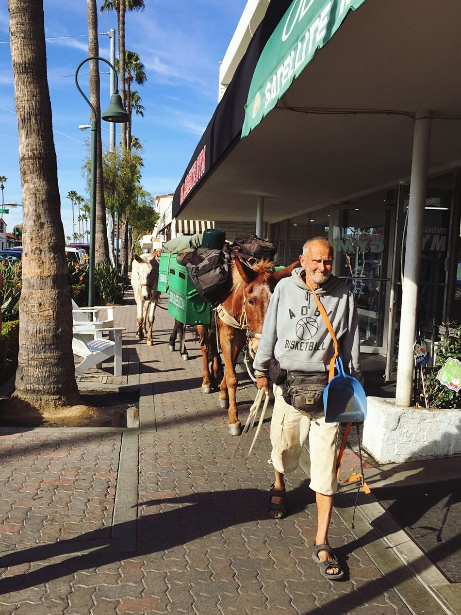 Meet John Sears, a man who has been walking across California for the past 10 years with his three mules to protest the loss of open spaces. We came across him and his mules (Lady, Little Girl and Pepper) walking down the streets of San Clemente on his way to San Diego. 3mules.com Travel Protest Cause Open Space What Does Freedom Mean To You? Freedom Showcase: December