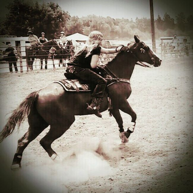My Determined Daughter Rescue Horse Barrel Racing Quarter Horses  Determination Rodeo Cowgirls Spurs:) Western Riding Quarter Horse