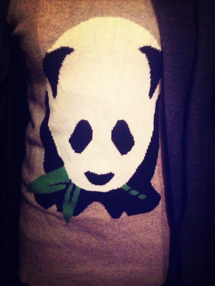Silly Lil Panda