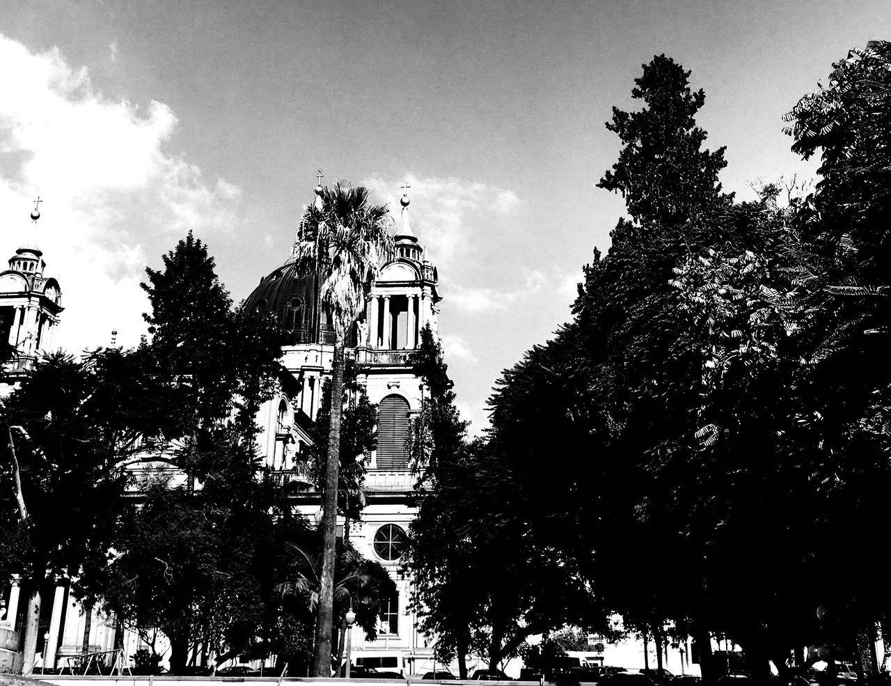 Catedral, Porto Alegre/RS - Brazil. Tree No People Outdoors Patrimonio Cultural Architecture Chapel