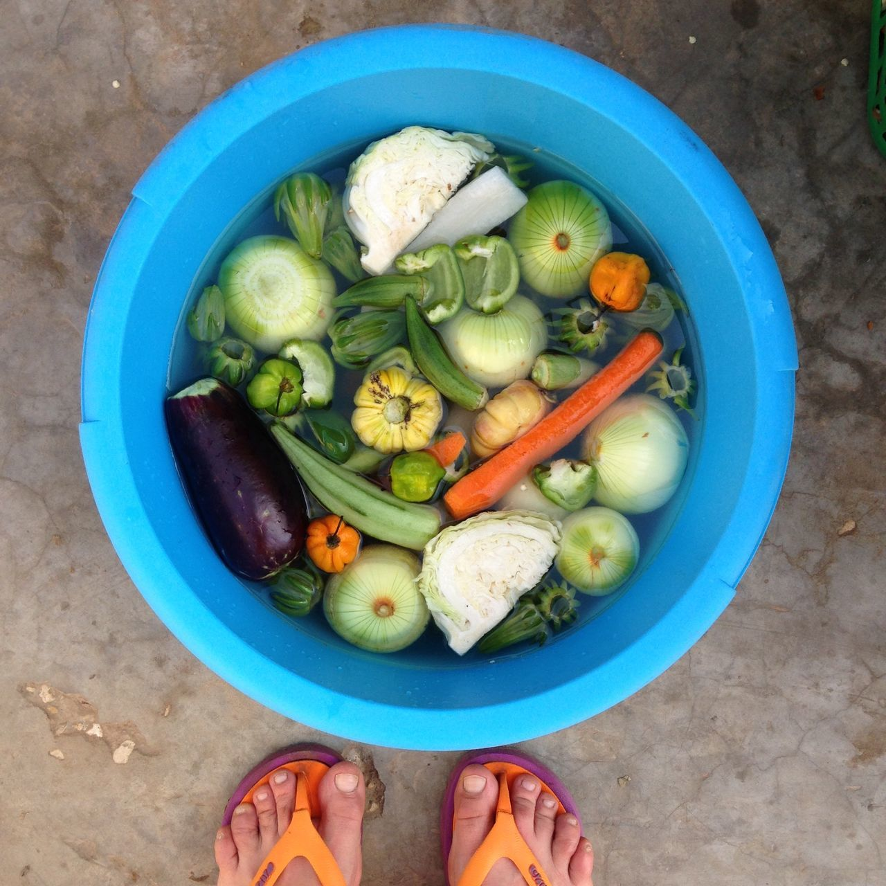 High Angle View Of Vegetables In Container By Low Section Of Person