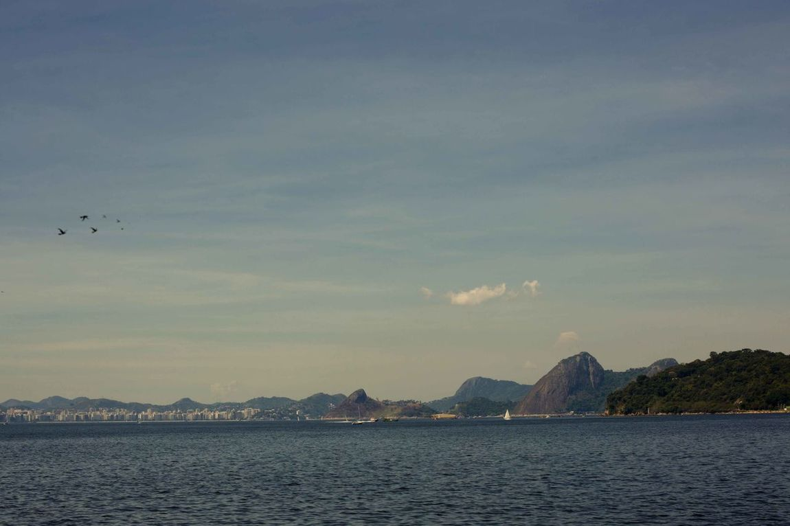 Riodejaneiro Beauty In Nature Dirfotografia Photography Cinegrafista  Working