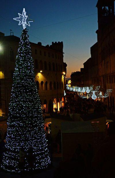 Photo Photography Nikonphotography Perugia Natale2015 Christmastime Cristmastree City Center Popular Beatiful