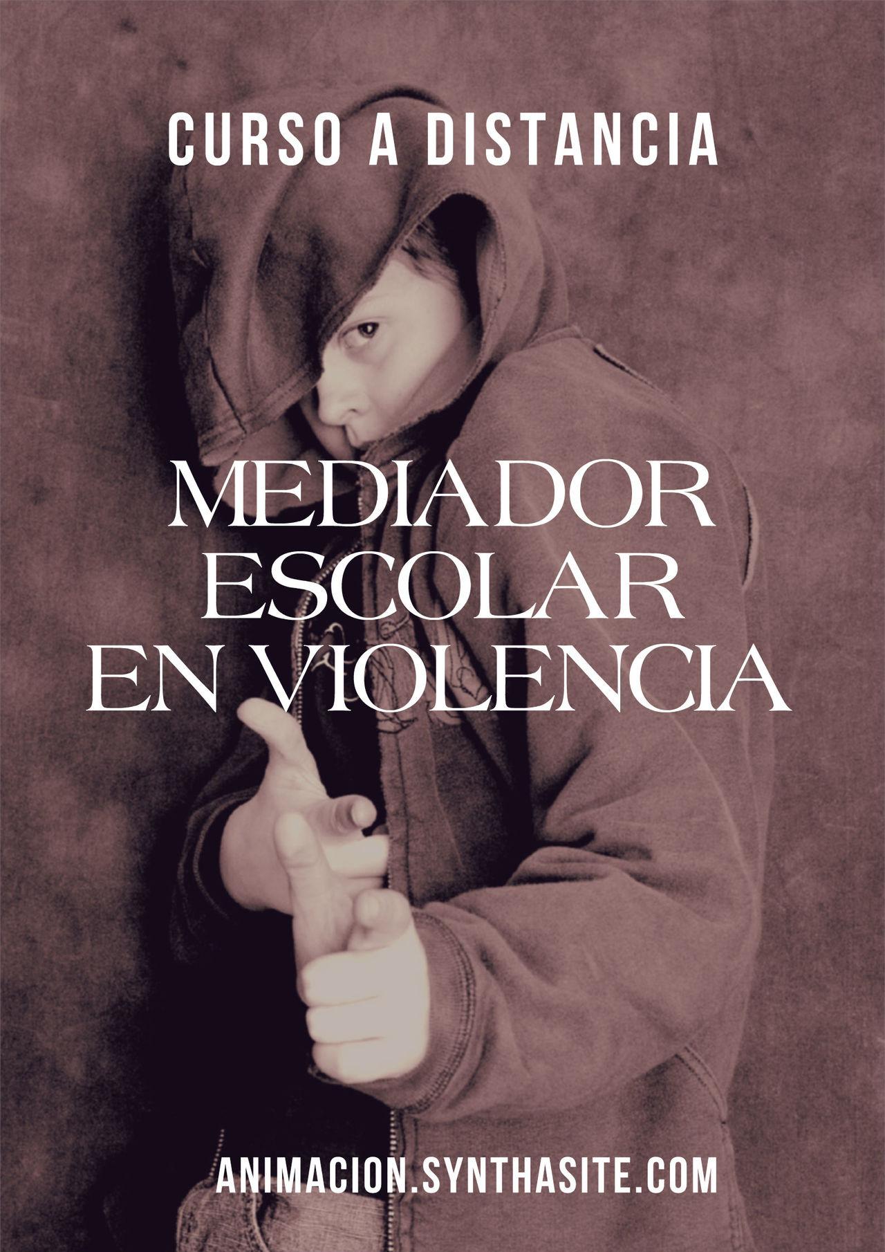 Curso Mediador Escolar en Violencia - bullying- a distancia toda España para maestras, educadores, profesores Acoso Bullying Cursos Educadores Escuela Maestras Maltrato Profesorad Profesores Violencia