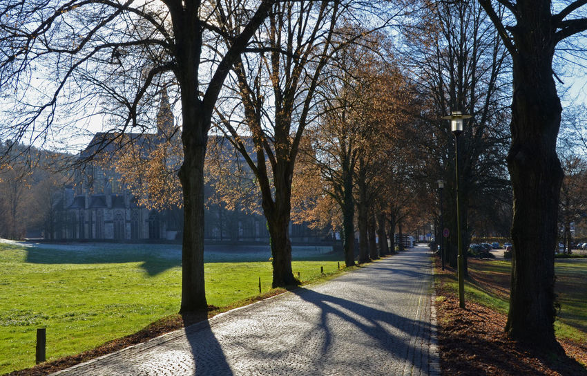Altenberg Altenberger Dom Autumn Beauty In Nature Cathedral Day Nature No People Outdoors Park - Man Made Space Scenics Travel Destinations Tree