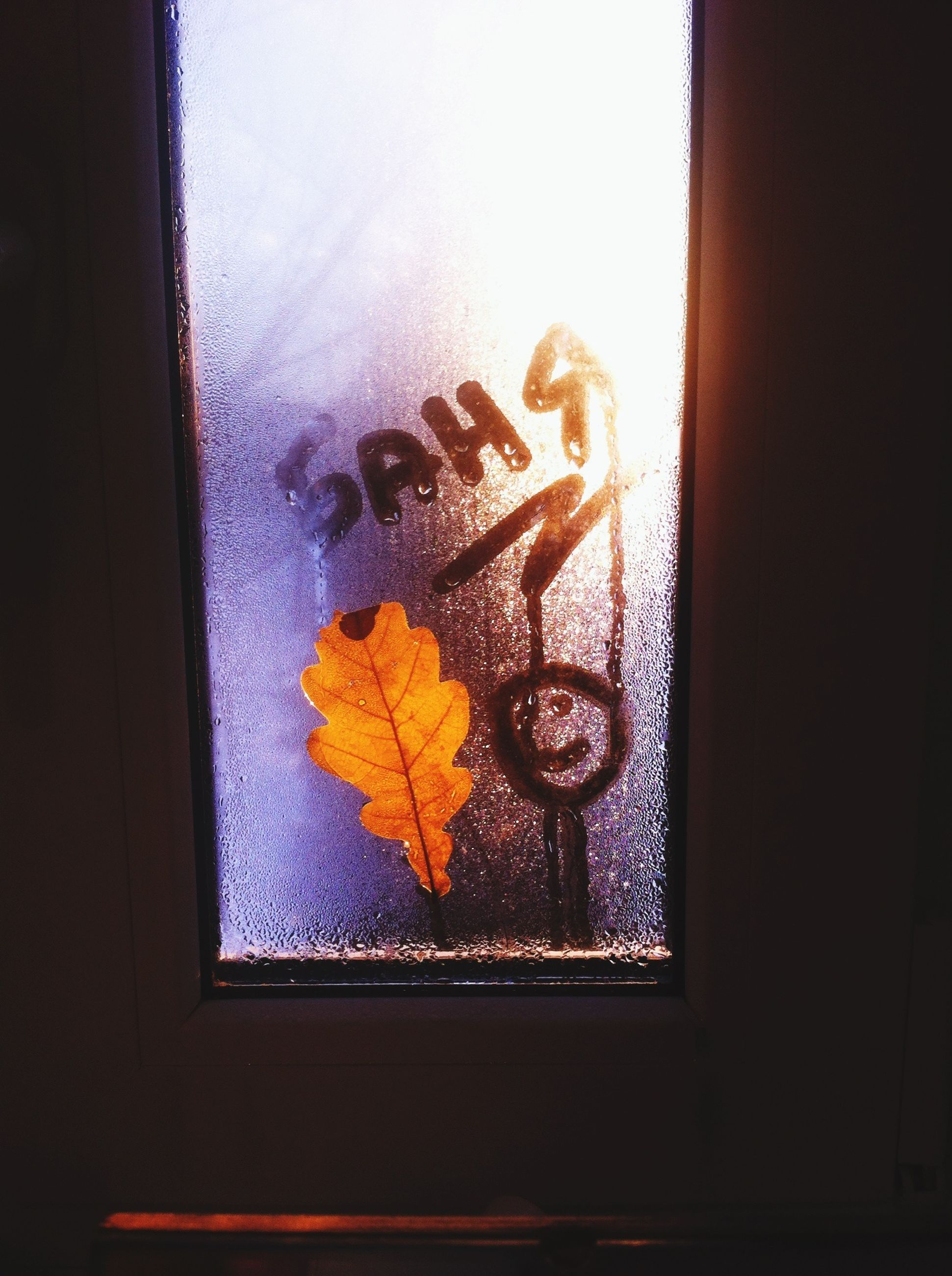 indoors, window, close-up, glass - material, wall - building feature, wall, art, creativity, door, art and craft, no people, yellow, transparent, still life, home interior, table, metal, leaf, window sill, day
