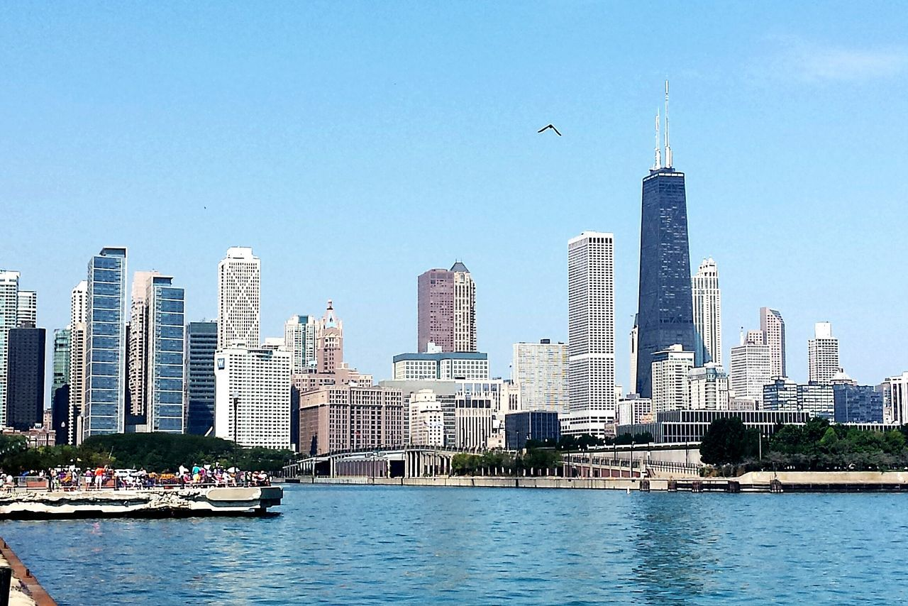 Beautiful stock photos of chicago skyline, Animal Themes, Architecture, Bird, Building Exterior