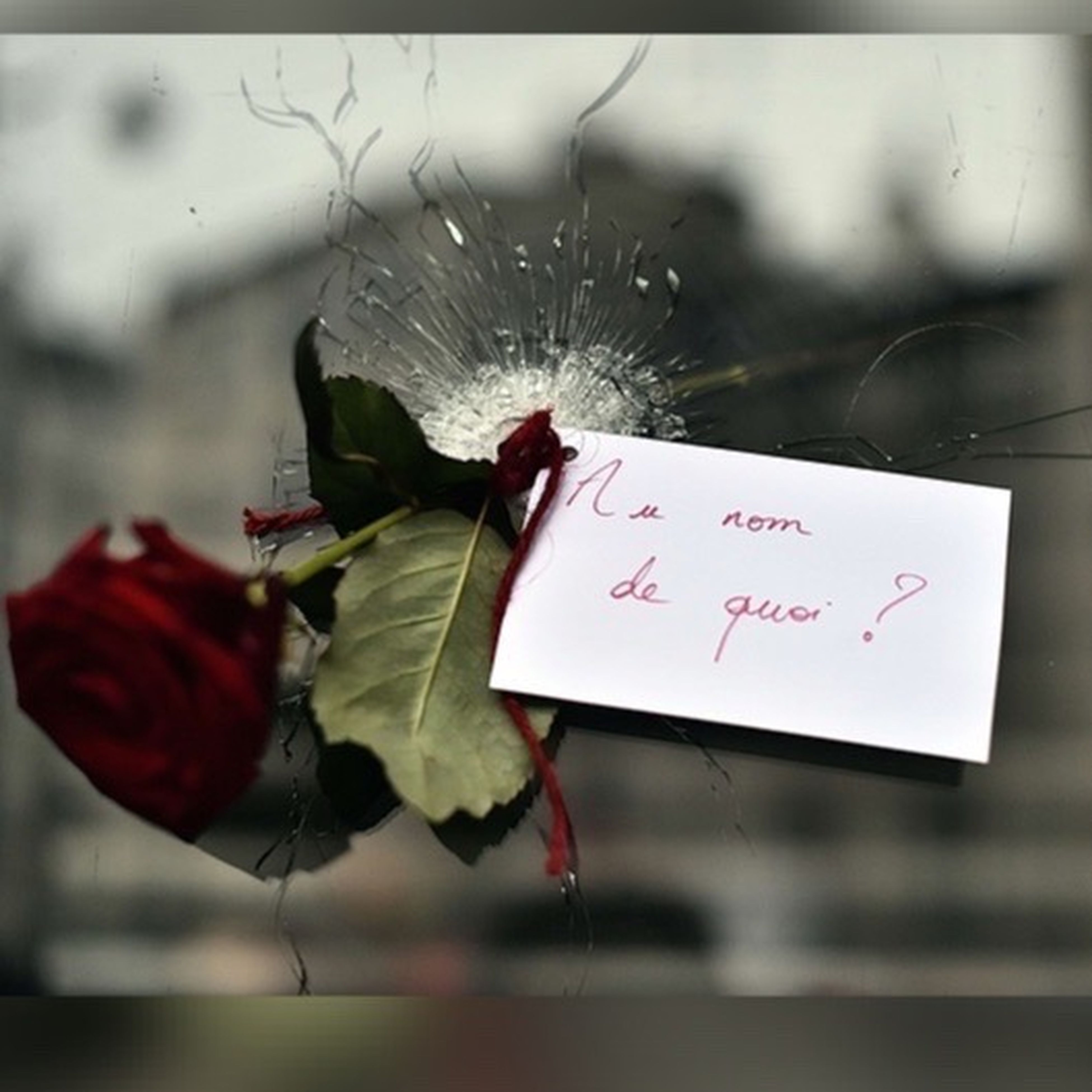 text, western script, communication, focus on foreground, close-up, hanging, red, paper, indoors, love, no people, day, selective focus, non-western script, flower, heart shape, decoration, celebration, message