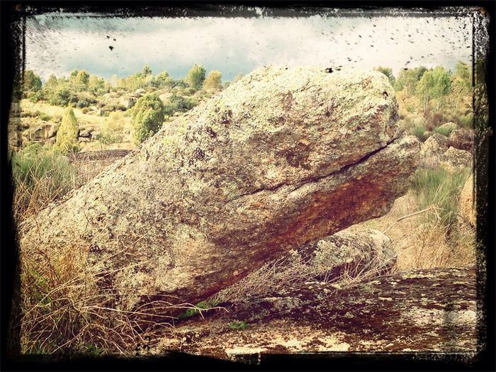 Nature Landscape Nessy granite monster