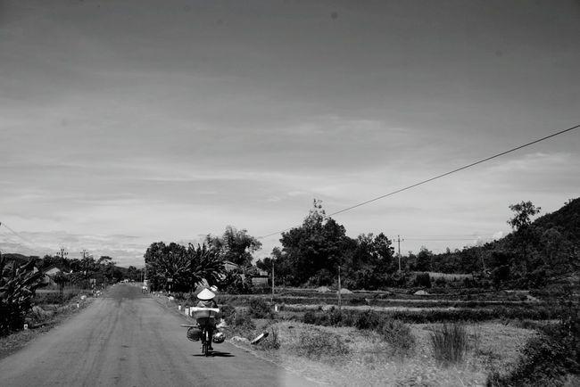 Journey Vietnam Rural Farmland Local Cropsfield Blackandwhite