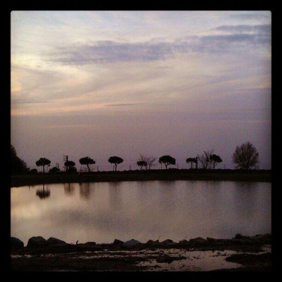 Marcharbel  StCharbel Annaya Sunset nature pic imagery shot camerashot HTC