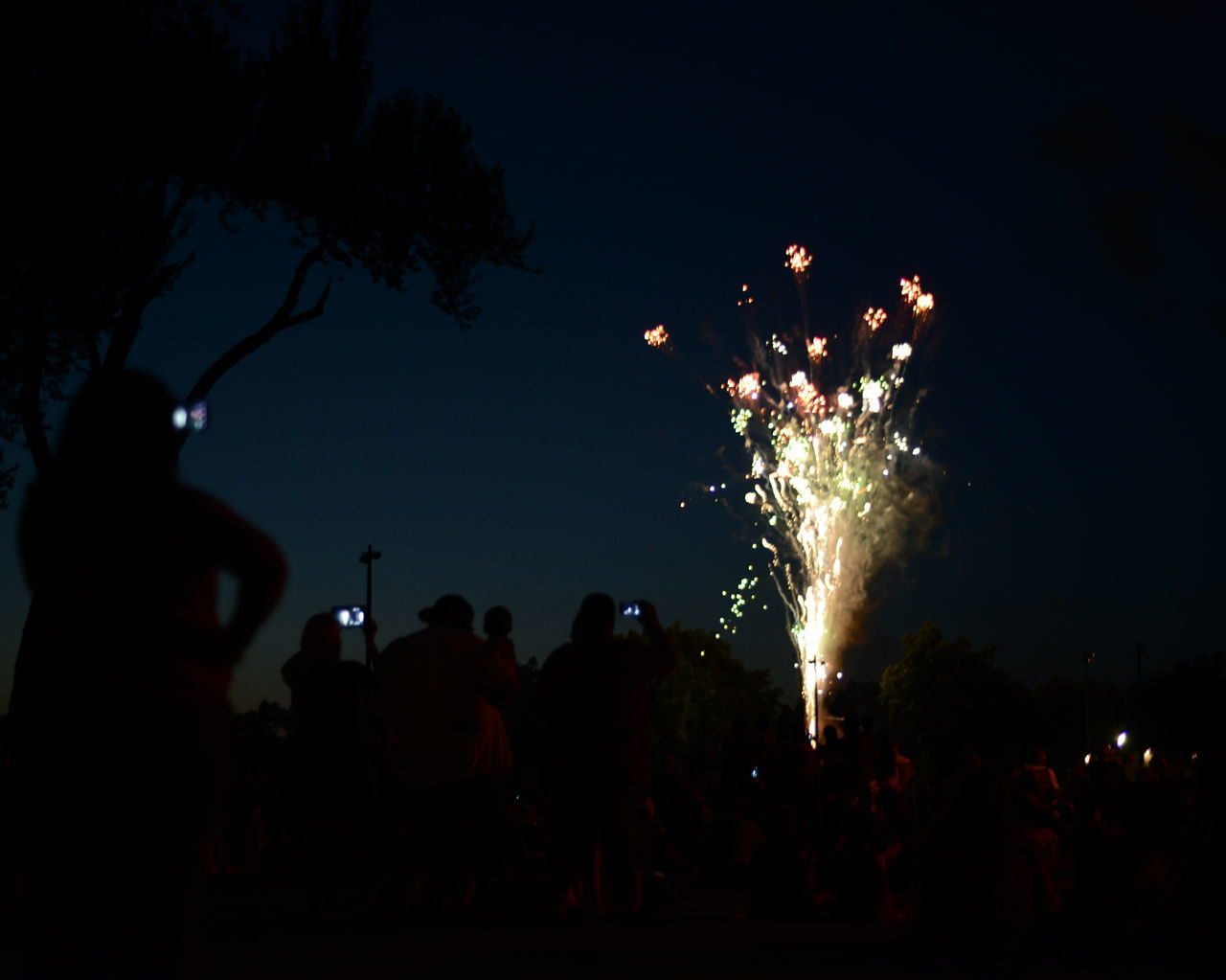 Silhouette People Photographing Fireworks Against Sky At Night