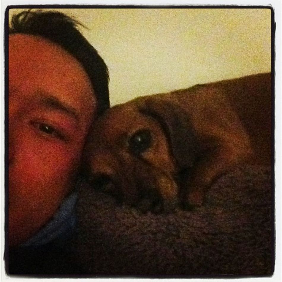 Best friends unite Biggles Noodle Beagle Love