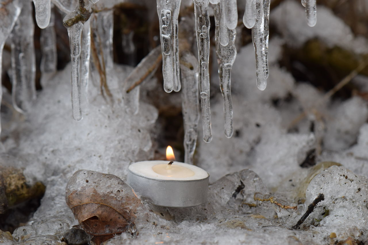 Beautiful Beautiful Nature Branches Candle Fire & Ice Flame Frozen Frozen Nature Ice Ice Cycles Macro Nature Nature On Your Doorstep Showcase: February Tealight Twigs Winter Winter WonderlandNo Edit/no Filter Candle Light Fire And Ice Literally A Moment Of Zen... Serenity Backgrounds