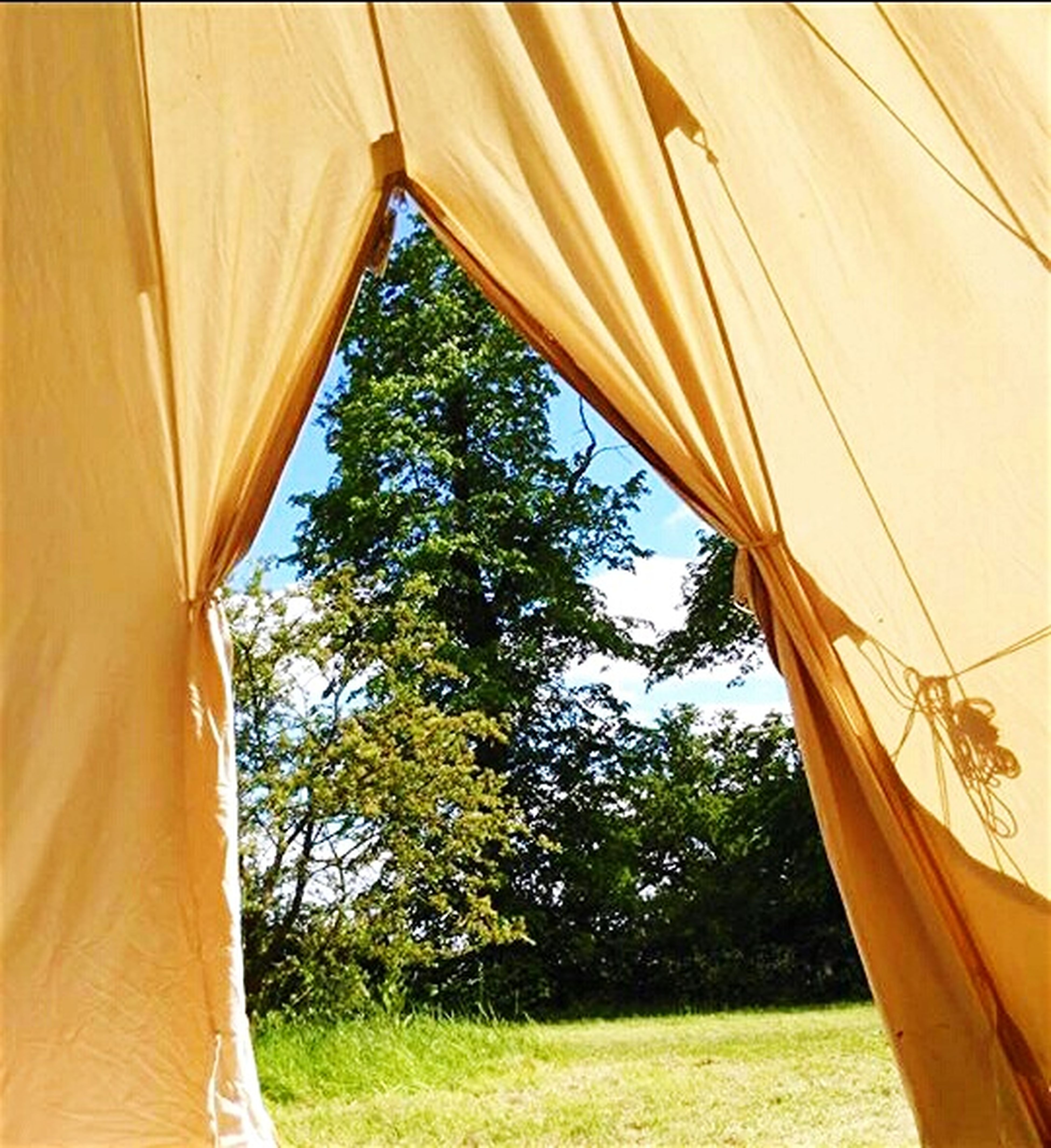 Looking Out Of The Bell Tent! Bell Tent Nature Trees Field Grass Sky Aldenham Park London