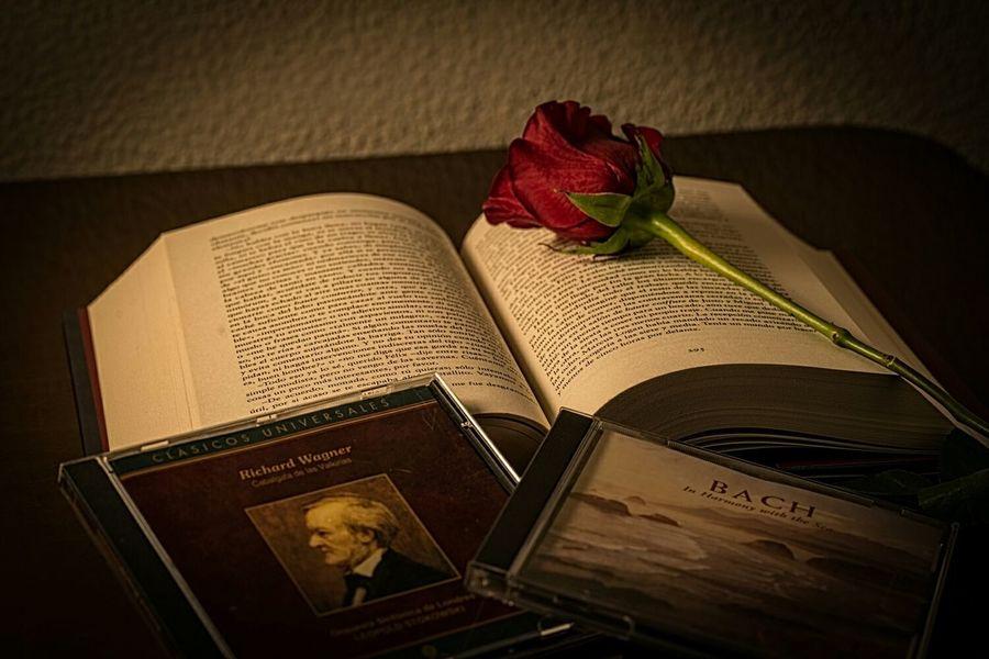 Feliz día de Sant Jordi. Nada mejor que un libro escuchando buena música Nikon D610 Somosfelices
