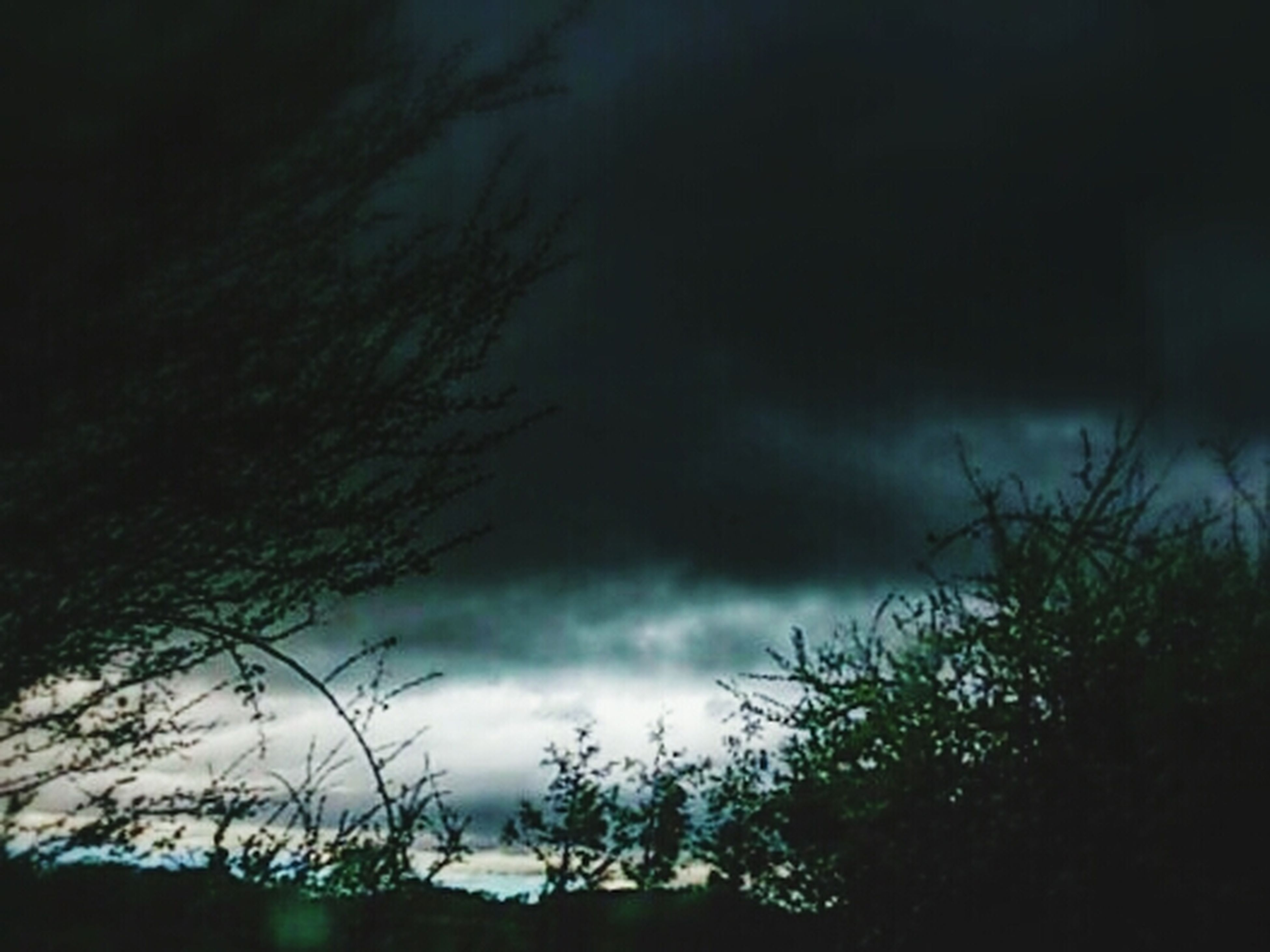 sky, cloud - sky, silhouette, cloudy, low angle view, tranquility, weather, beauty in nature, nature, tranquil scene, overcast, scenics, tree, storm cloud, dusk, cloud, dramatic sky, outdoors, idyllic, atmospheric mood