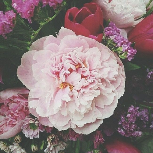 этотмирпрекрасен  цветы Wonderful World flowers amazing nice color great loveisintheair instagood