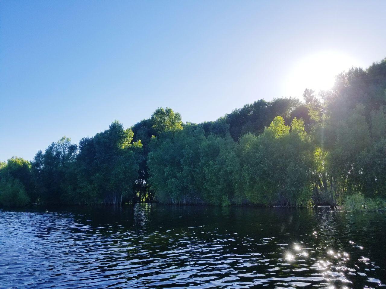 Kayaking Water Trees Outdoors Lake Day No People Having A Good Time Exercising In Nature Fun