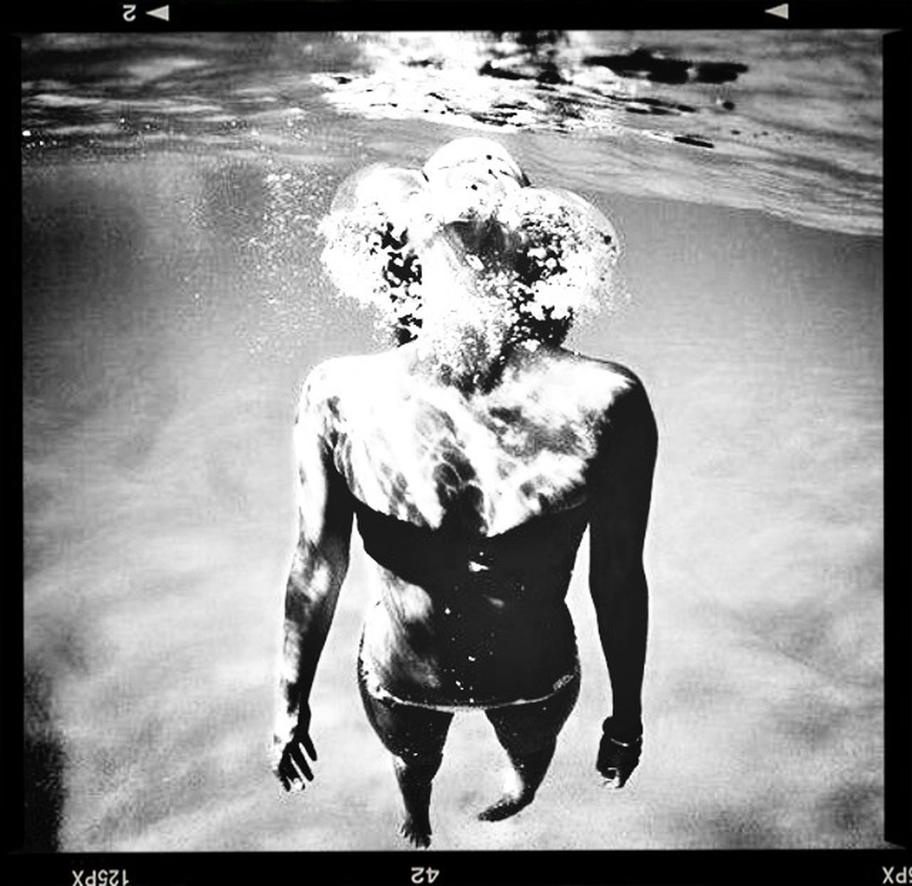 Fortheloveofblackandwhite Swimming In The Ocean Blue Why I Love Florida