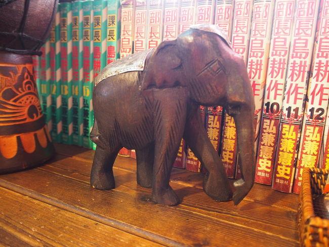 象 ゾウ Elephant